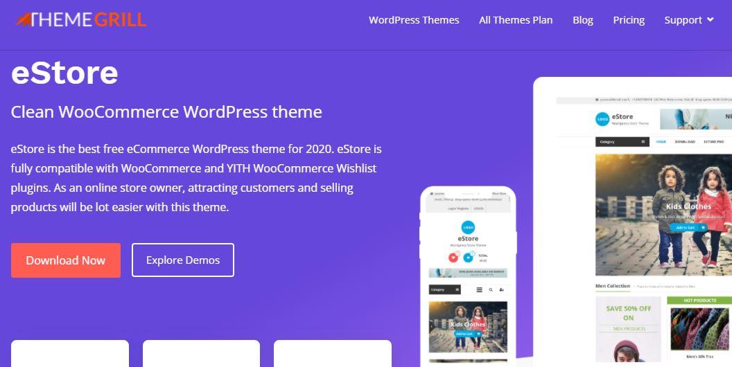 Google Adsense WordPress theme